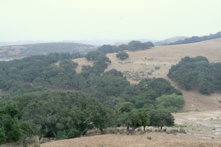 Los Flores Ranch